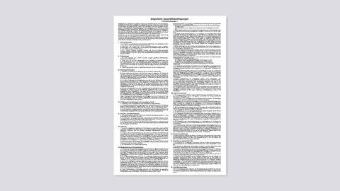 Allgemeine Geschäftsbedingungen (Verkaufsbedingungen)